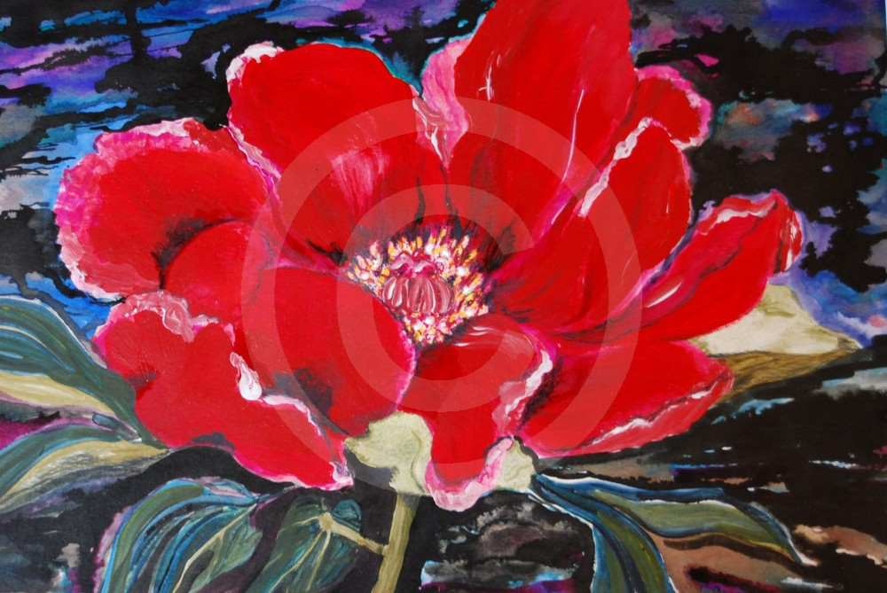 Red Peony by Margaret Owen