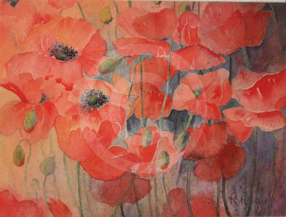 Poppies by Rhona Rowley