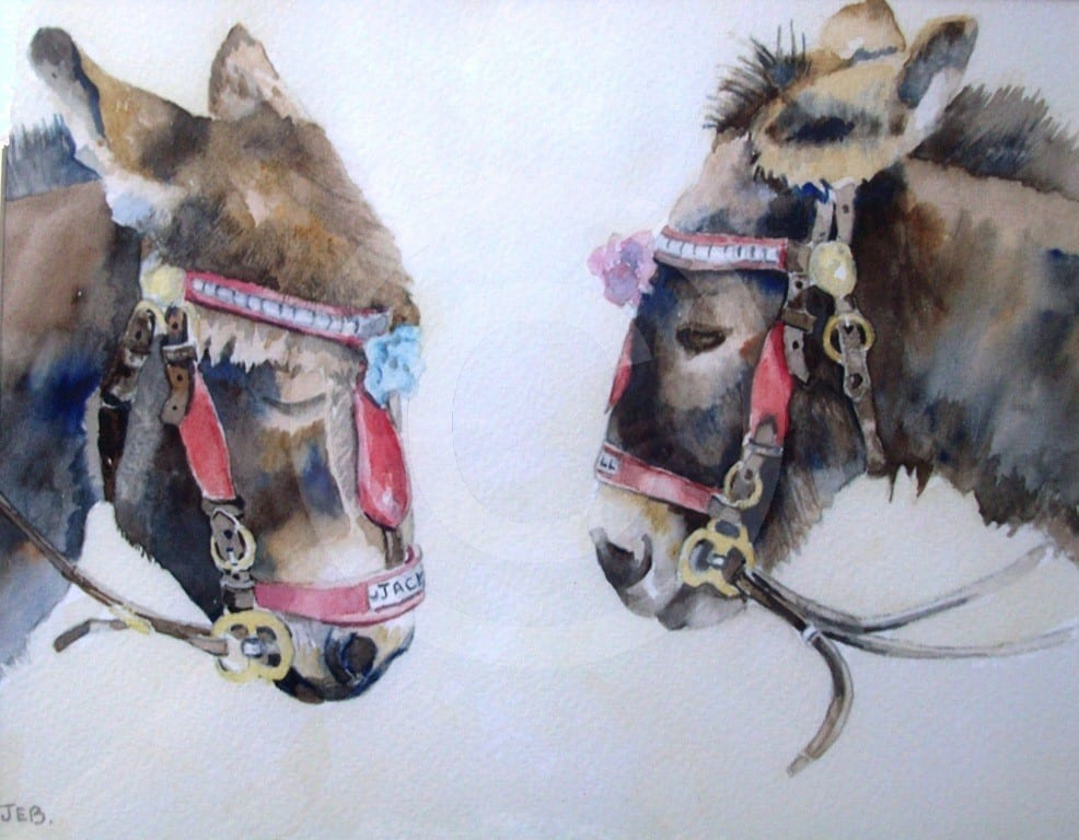 Scarborough Donkeys by Janet Basten