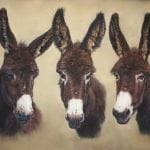 Donkeys by Cath Inglis