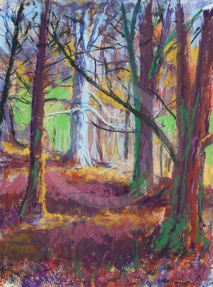 Autumn in Dalby Forest by Hector Fraser