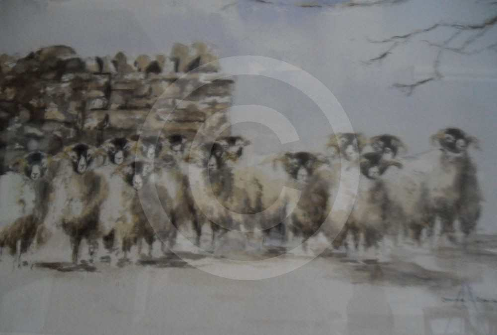 Sheep Flock in Winter by Joanne Blacker