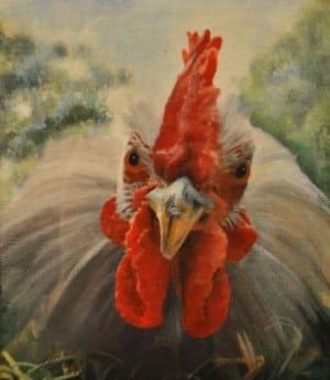 Guest Artist Choice - Lavender Pekin Bantam Cockerel by Teresa Hollins