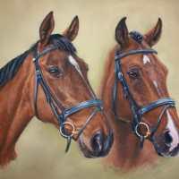 Cath Inglis – Emma & Arnie Event Horses