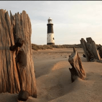 Spurn Point Safari Trip
