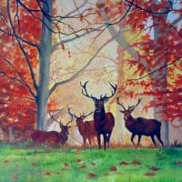 Stags by Carole Cutland